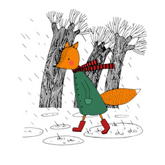 Sad fox walking in the rain.