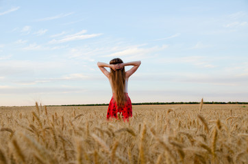 Girl standing in a wheat field with his hands behind his head, the night sky seen from behind