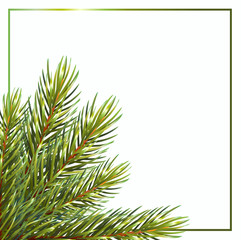 Card with lush branches on white background.Isolated on white background. Christmas vector illustration. vector