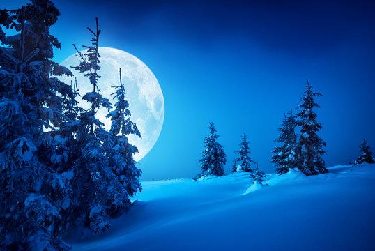 Carpathian moonlit night