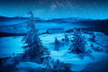 Village in moon light