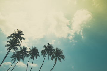 Coconut palm trees on tropical ocean beach, vintage toned and retro color stylized