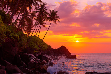 Sunset on tropical coast with rocks in wavy ocean and palm trees on a hill