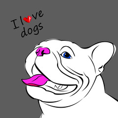dog vector breed cute pet animal bulldog