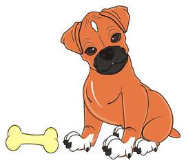Tuinposter Honden sit, sleep, in love, love, hearts, animal, cartoon, German boxer, color, dog, puppy, pet, orange, brown, profile, boxer dog, woof, germany, boxer