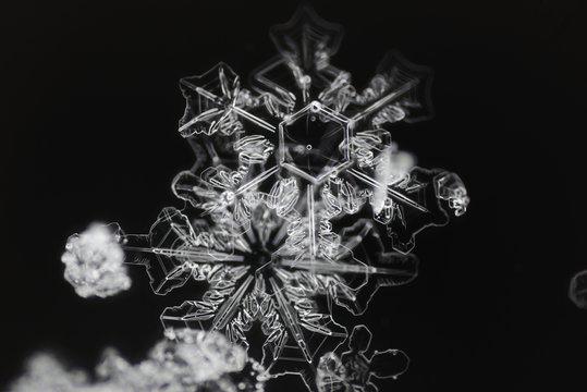 Extreme closeup of natural snowflakes