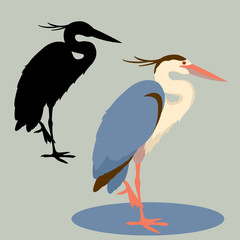 Heron vector illustration style Flat set