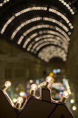 Photo of festive garland city