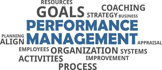 word cloud - performance management
