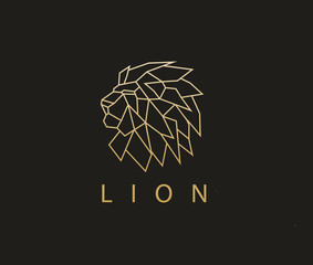 Lion Logo, Vector logo template.