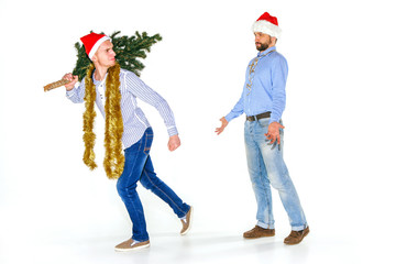 The young man in Santa cap carrying Christmas tree