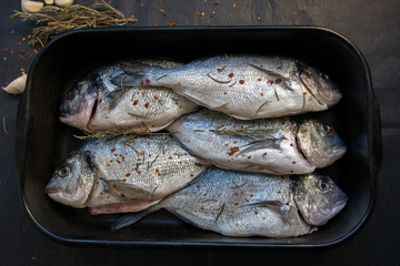 Royal bream fish  prepared in tray