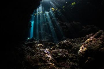 Wall Mural - Beams of Sunlight in Underwater Grotto