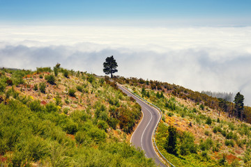 mountain route above the clouds in Tenerife Island, Spain