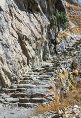 Steep staircase on the trail near Tengboche monastery - Nepal, Himalayas