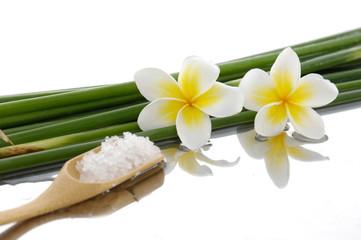 Two frangipani with bamboo grove, salt in spoon