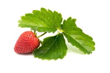 Fototapete - Fresh ripe strawberry with leaves