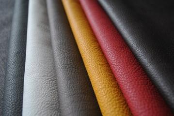 Tekstura kolorowej skóry