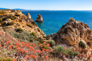 Wall Mural - Beautiful Algarve coast with flowers near Lagos Portugal