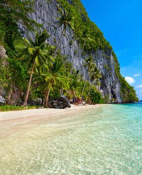 Beautiful island. Blue bay and palm trees. El Nido, Palawan, Phi