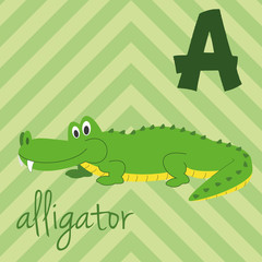 Cute cartoon zoo illustrated alphabet with funny animals: A for Alligator. English alphabet. Learn to read. Isolated Vector illustration.