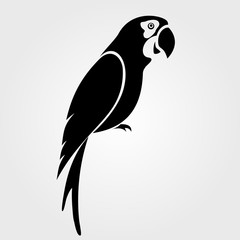 Parrot icon isolated on white background.