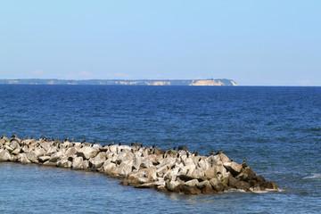 Kormorane auf Rügen, Blick auf Kap Arkona