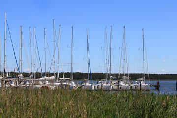 Seegelboote, Yachthafen, Breege, Rügen