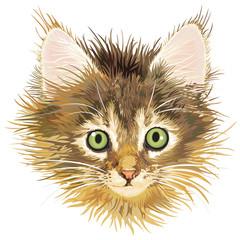 sadness kitten, vector