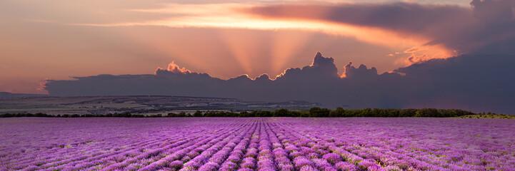Fotobehang Crimson Crimea. A beautiful panoramic view