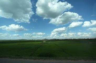 Madagascar rice fields under blue cloudy sky
