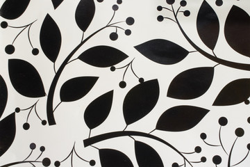 picture black branch with leaves and berries on white background