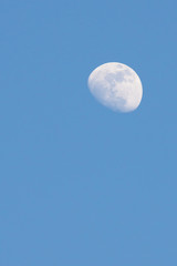 Half moon appear in the afternoon time in the sky.