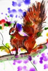 squirrel - watercolor illustration