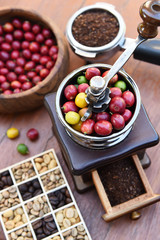 Close up of coffee beans ripening in coffee grinder