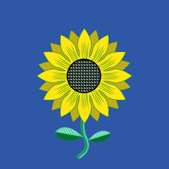 Sunflower - Symbol of Farm Harvest. Vector Flower illustration