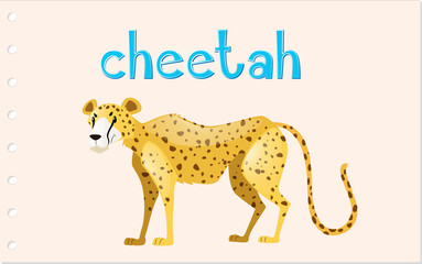 Animal wordcard with wild cheetah