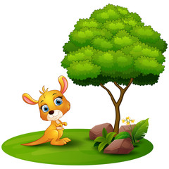 Cartoon kangaroo under a tree on a white background