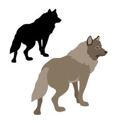 wolf vector illustration style Flat set