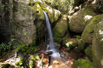Small waterfall in Masoala national park, Madagascar
