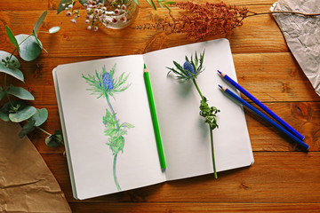 Collection of plants and sketchbook with drawing on wooden background