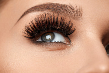 Long Black Eyelashes. Closeup Beautiful Female Eye With Makeup