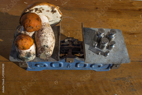 Wild mushrooms to weigh on the old scale orange fungus food for sale small business - Wild mushrooms business ideas ...