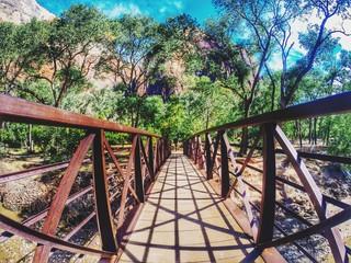 Rusty Walkway