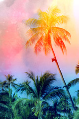 Retro photo of palm trees