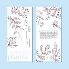 creative universal card with plants. banners with branches. vector illustration