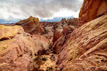 Valley of Fire State Park, Nevada, USA - December 23, 2106:  Panorama of the many spectacular red rock formations found in this state park located 55 miles northeast of Las Vegas.