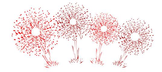 fête célébration feu d'artifice