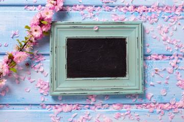 Pink sakura  flowers  and empty blackboard on blue wooden planks
