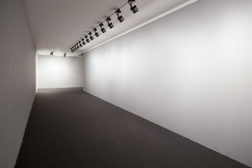 Presentation Room, Wall For Images, Empty Wall, Exhibition Room Lights, Gallery Interior, Lighted Wall, Exhibition Room, Showroom Perspective, Showroom For Images, Wall Picture, Empty Wall